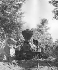 Manns Creek locomotive No.8